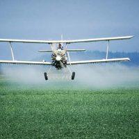 pesticidiNoGrazie