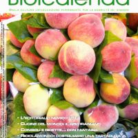 biolcalenda luglio 2013