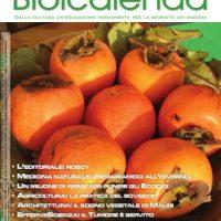 biolcalenda novembre 2013