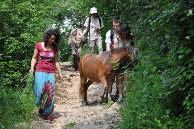 la passeggiata con l'asino e il pony che vivono nel terreno condiviso, accuditi da tutti