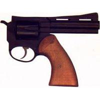 pistola-estinguersi-per-ipocrisia