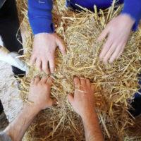 Costruire con la paglia e autocostruzione