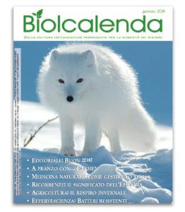 Biolcalenda di gennaio 2017 - mensile dell'associazione La Biolca. In copertina Volpe Artica