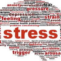 Lo stress quotidiano, riconoscerlo e trasformarlo