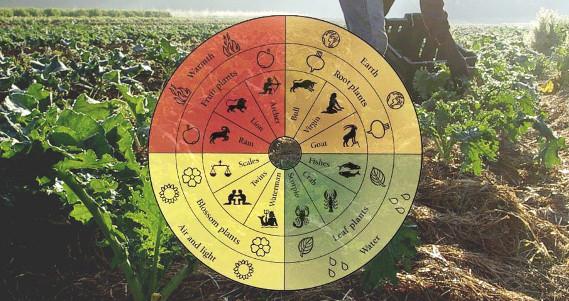 Orticoltura Biodinamica