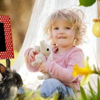 NutriMENTI: Rassegna di Sapori e Saperi