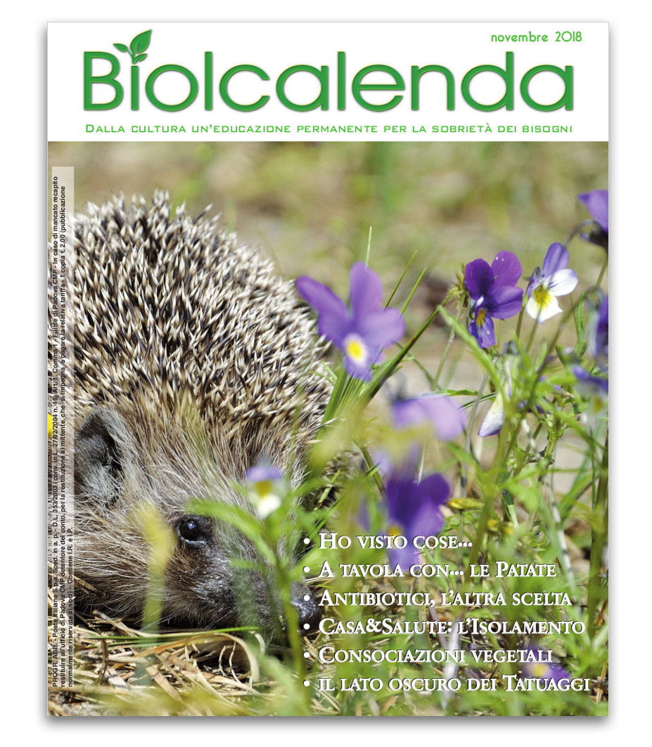 Biolcalenda di novembre 2018 - mensile dell'associazione La Biolca.
