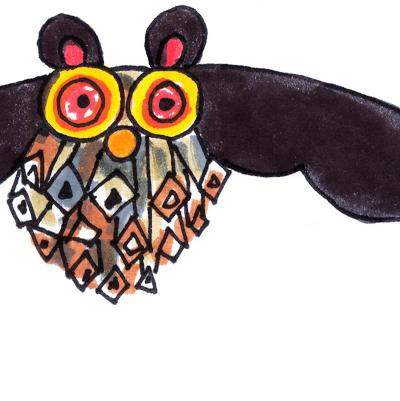 pipistrello pigna
