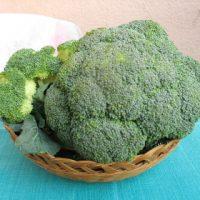 Broccolo - Ortaggio del mese Biolcalenda Gennaio 2016