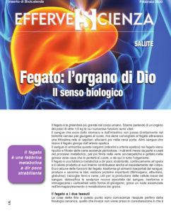 Fegato: l'organo di Dio - Effervescienza n.127