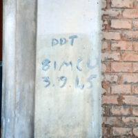 uso del DDT da parte delle truppe anglo-americane per igienizzare gli edifici
