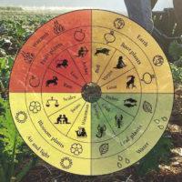 Corso di agricoltura biodinamica