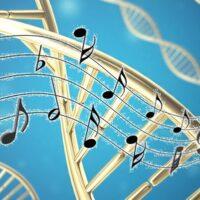 Il suono e le bio-frequenze