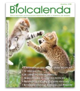 Biolcalenda di dicembre 2018 - mensile dell'associazione La Biolca.