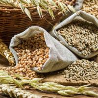 Novità (e conferme) sulle fibre vegetali