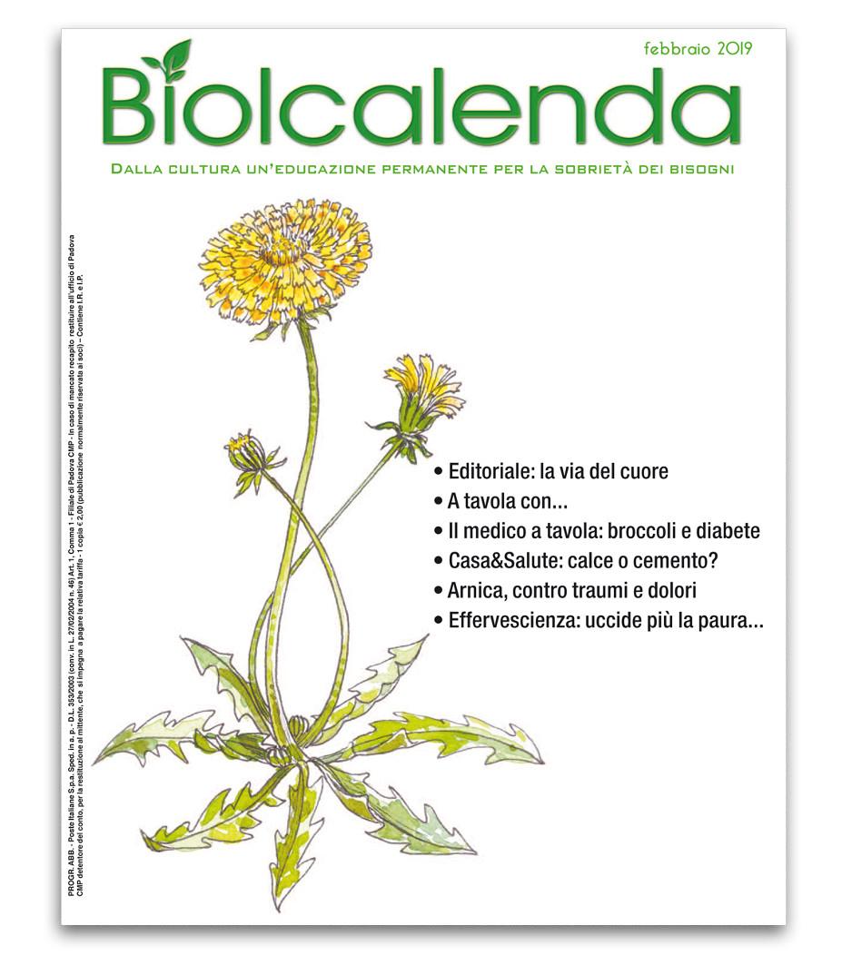 Biolcalenda di febbraio 2019 - mensile dell'associazione La Biolca. In copertina il Tarassaco