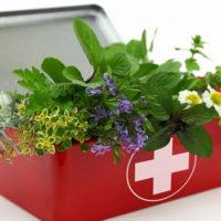 Cure naturali secondo natura