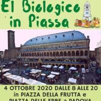 El Biologico in Piassa - Padova