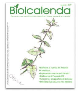 Biolcalenda di novembre 2019 - mensile dell'associazione La Biolca. In copertina l'ortica