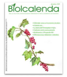 Biolcalenda di dicembre 2019 - mensile dell'associazione La Biolca. In copertina il ribes
