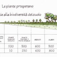 Buone pratiche in agricoltura biodinamica - Fabio Fioravanti