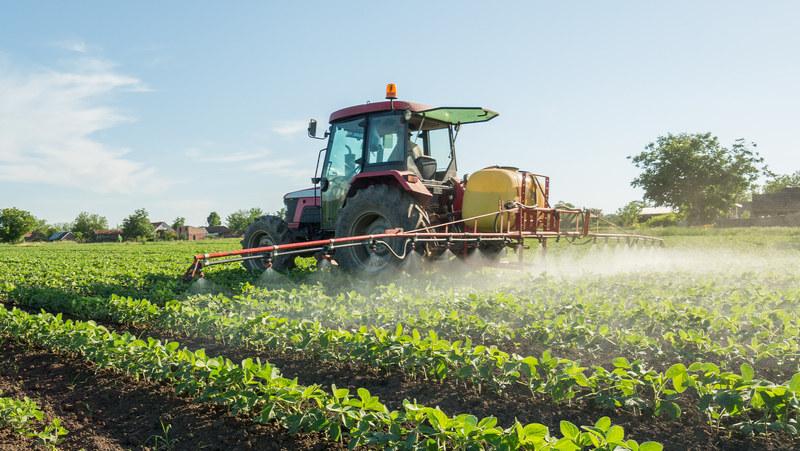 Dieta vegetariana e agricoltura biologica