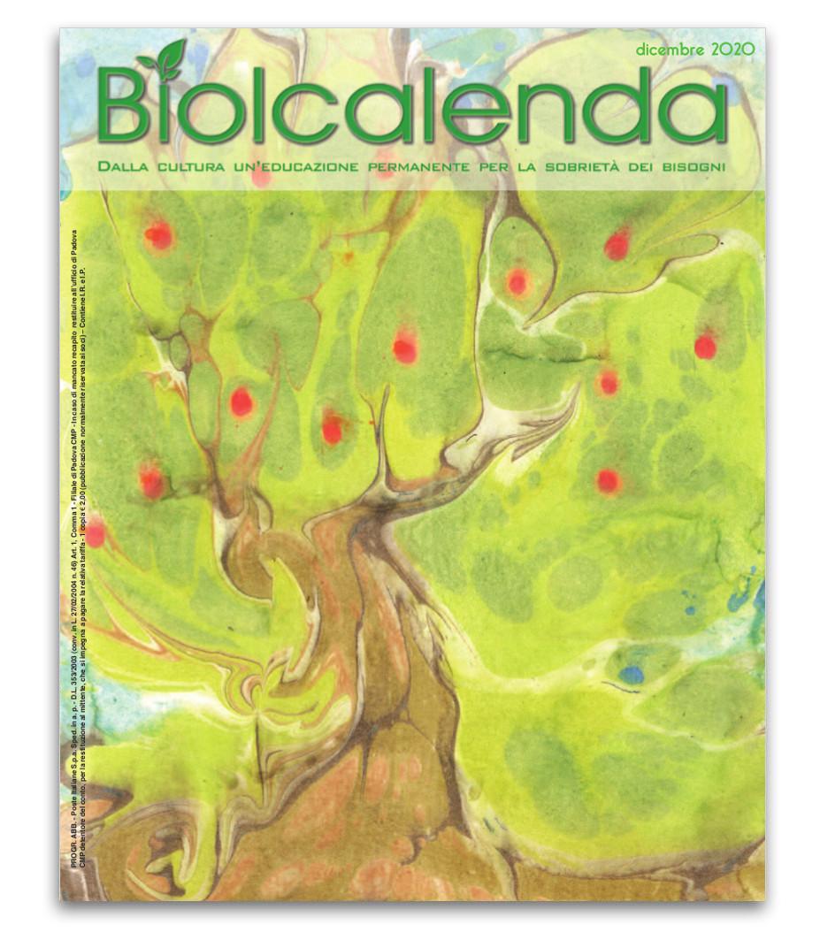 Biolcalenda di Dicembre 2020 - mensile dell'associazione La Biolca