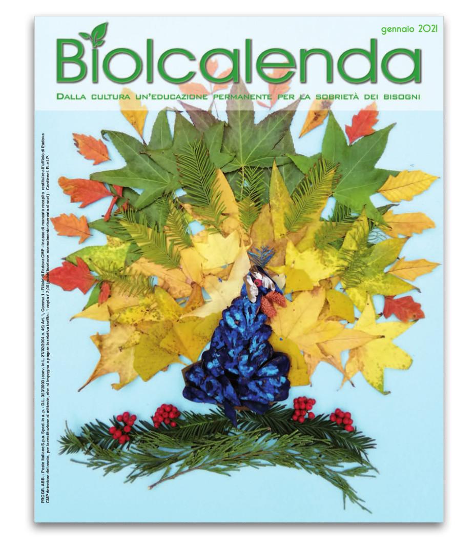 Biolcalenda di gennaio 2021 - mensile dell'associazione La Biolca. In copertina Pavone di Elena Bassi