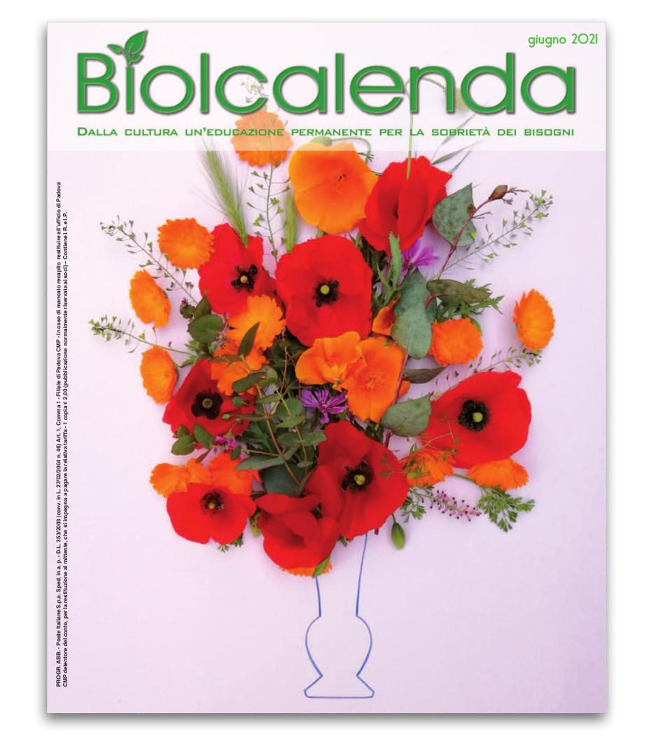 Biolcalenda di Giugno 2021 - mensile dell'associazione La Biolca. In copertina Camminando nei campi