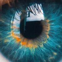 Corso Bates occhi computer