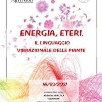 Energia, Eteri il linguaggio vibrazionale delle piante